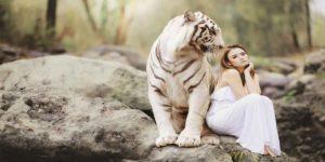 सपने में शेर को देखने का क्या है मतलब?