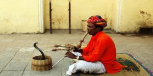 नाग पूजा क्या है तथा कैसे करें सांपों की पूजा