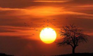 शनि जयंती: आखीर क्यों शनि देव रखते हैं सूर्य देव से शत्रु का भाव!
